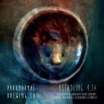 ASTROLING - Triple Fruited Sour by Paranormal Brewing